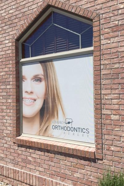 idaho-ortho-window-mesh